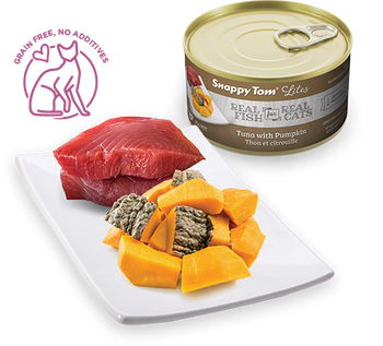 Tuna With Pumpkin Canned Cat Food
