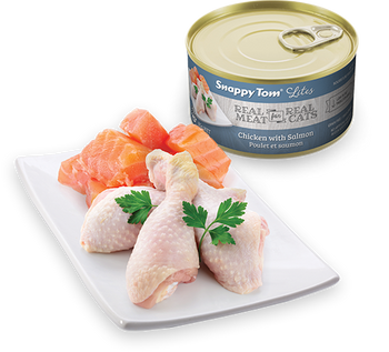 Chicken With Salmon Canned Cat Food