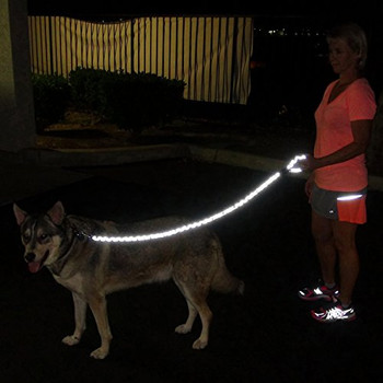 Nite Brite Reflective Dog Leash
