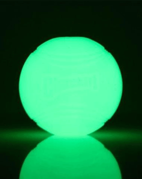 Glow Ball Dog Toy