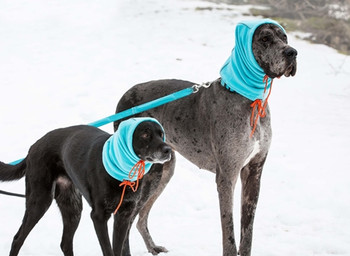 Summit Snood for Large Breeds