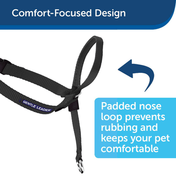 Halti Gentle Leader Quick Release Dog Headcollar - Medium Size for Dogs up to 60lbs