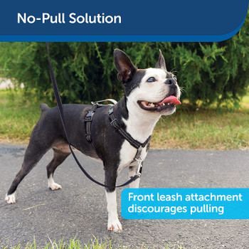Easy Walk®  No Pull Padded 3 in 1 Dog Harness - Black
