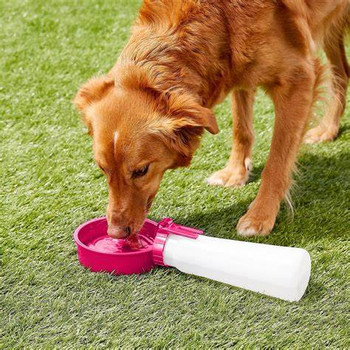 Water Rover Pet Portable Drinking Container