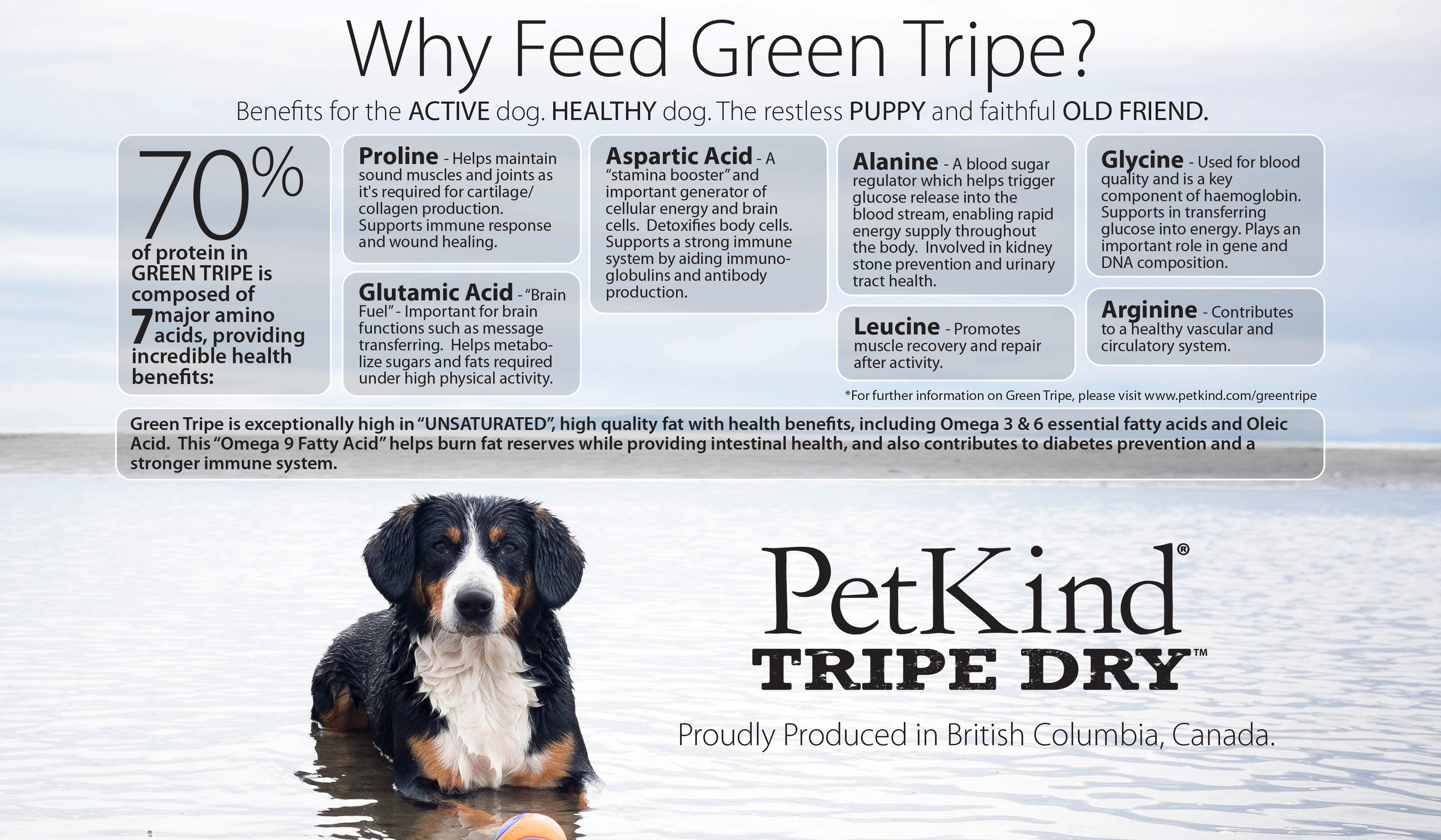 petkind-banner-why-feed-tripe.jpg