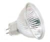 FNV/CC Light Bulb