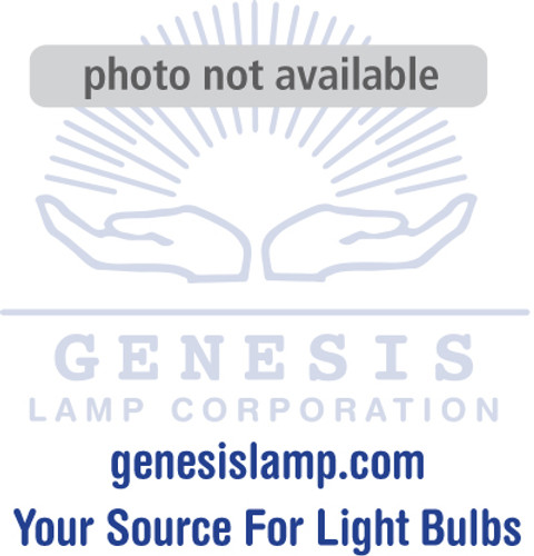 25G16.5/W/MED-130 G16.5 Medium Base Decorative Light Bulb (E26)