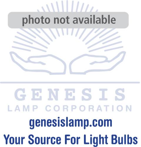 60G16.5/W/MED G16.5 Medium Base Decorative Light Bulb (E26)
