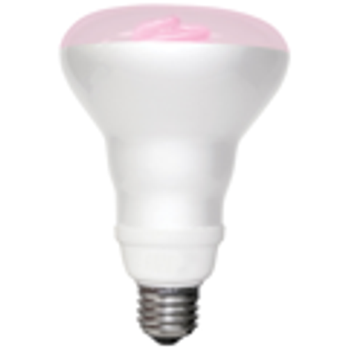 8Watt - Cold Cathode R30 Shaped Reflector Lamp - Pink - 27K - (TCP Brand)