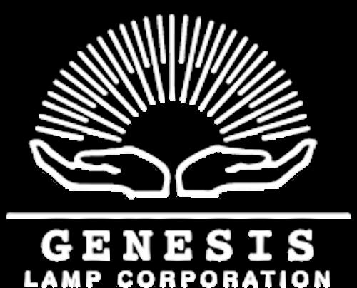 Q6.6A/PAR56/4 200w - Elevated Approach Lamp - Genesis Lamp Brand