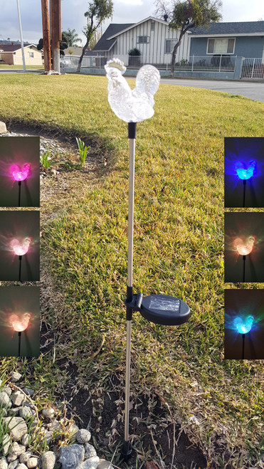 Color changing solar stake lights have a Rooster on top to enjoy, and will look great at your farmhouse style home.