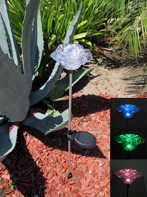 The Rose flower color changing solar lights stand 34.5 inches high, and will change colors for up to 8 hours at night.