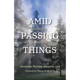 Amid Passing Things