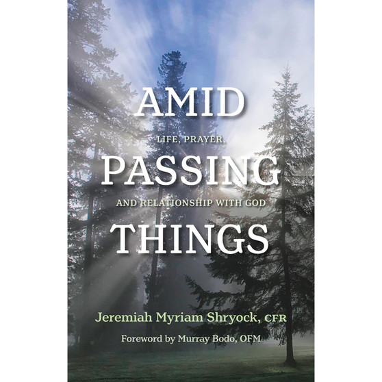 Amid Passing Things