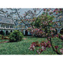 Woven Scene on Monastery Throw: Monastery Cloister Garden
