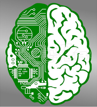 Brain Circuit Board Tech Savy Decal Sticker