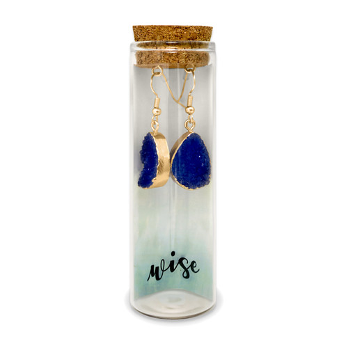 Embrace Your Message- Druzy Earrings / Wise