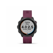 Garmin Forerunner 245, GPS Running Smartwatch with Advanced Dynamics (Berry)