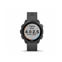 Garmin Forerunner 245, GPS Running Smartwatch with Advanced Dynamics (Slate Gray)