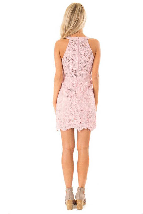 Blush Floral Lace Dress with High Neck and Scalloped Hem back full body