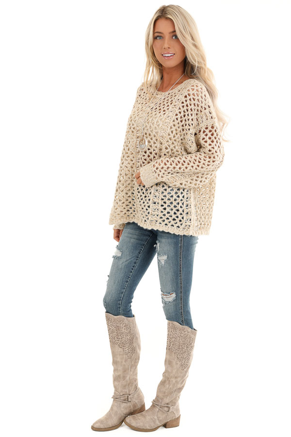 Oatmeal and Metallic Gold Long Sleeve Sheer Knit Sweater side full body