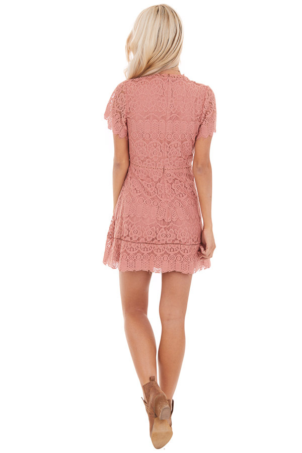 Dusty Rose Detailed Lace Dress with Sheer Short Sleeves back full body