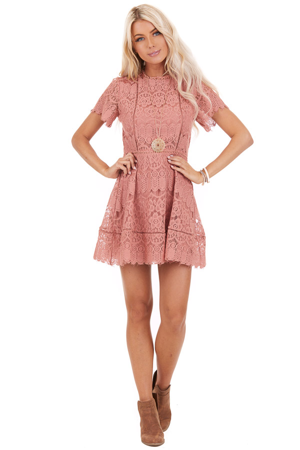 Dusty Rose Detailed Lace Dress with Sheer Short Sleeves front full body