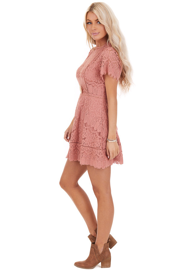 Dusty Rose Detailed Lace Dress with Sheer Short Sleeves side full body