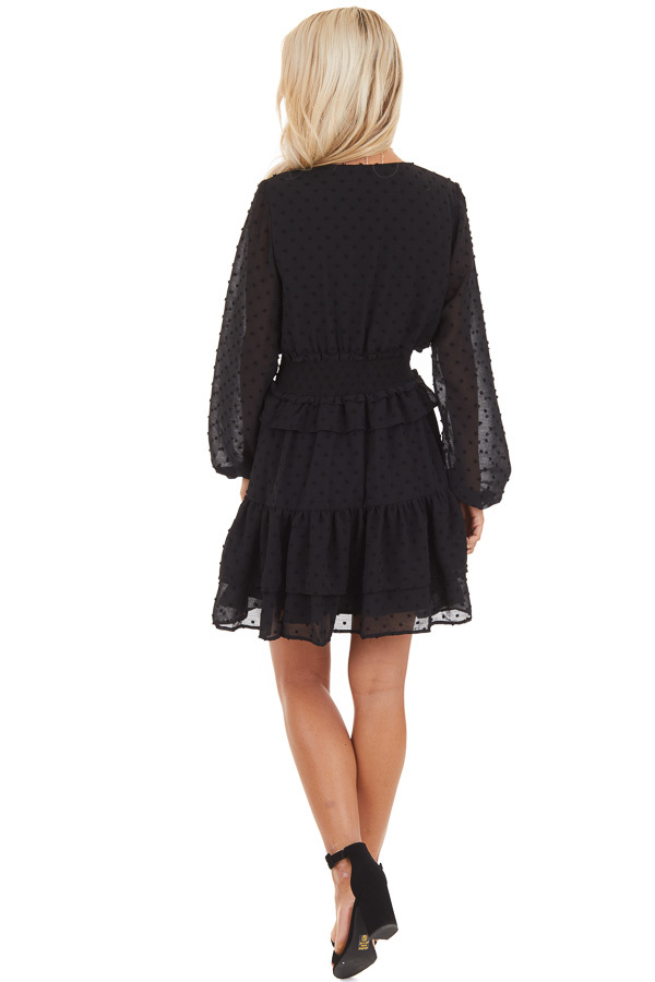 Black Sheer Long Sleeve Mini Dress with Swiss Dot Details back full body