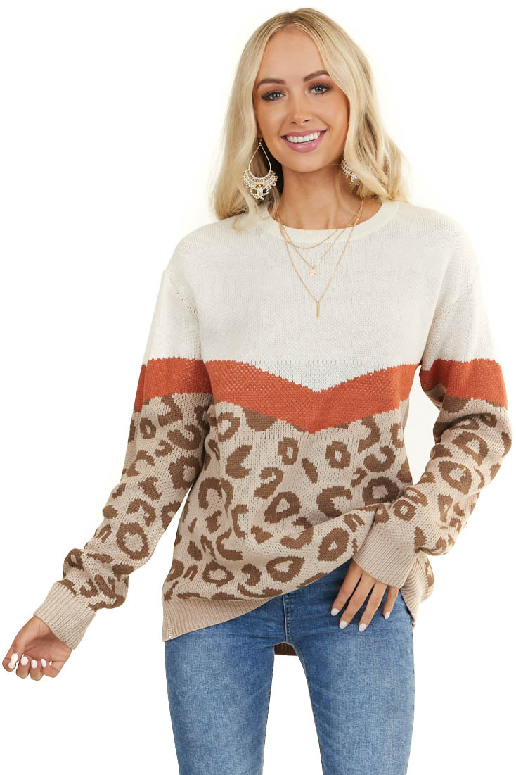 Tan Animal Print Sweater with V Shaped Block Detail