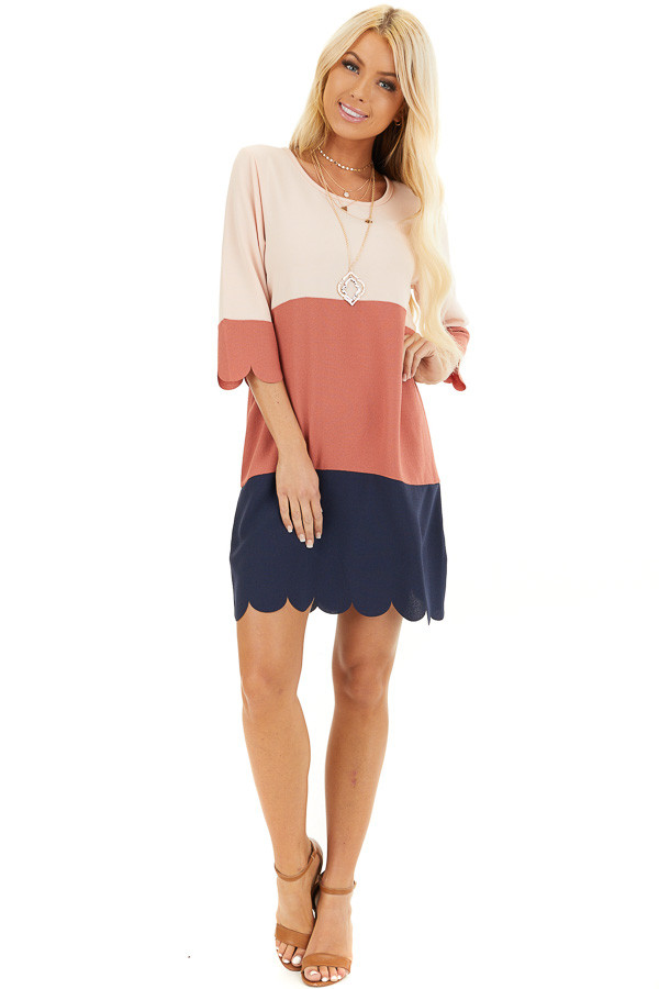 Dusty Rose and Navy Color Block Dress front full body