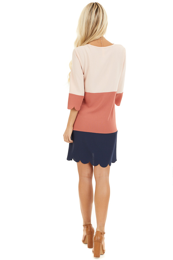 Dusty Rose and Navy Color Block Dress back full body