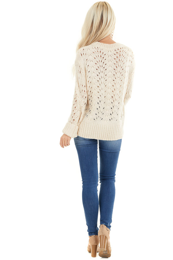 Champagne Crochet Knit Sweater Top with Long Sleeves back full body