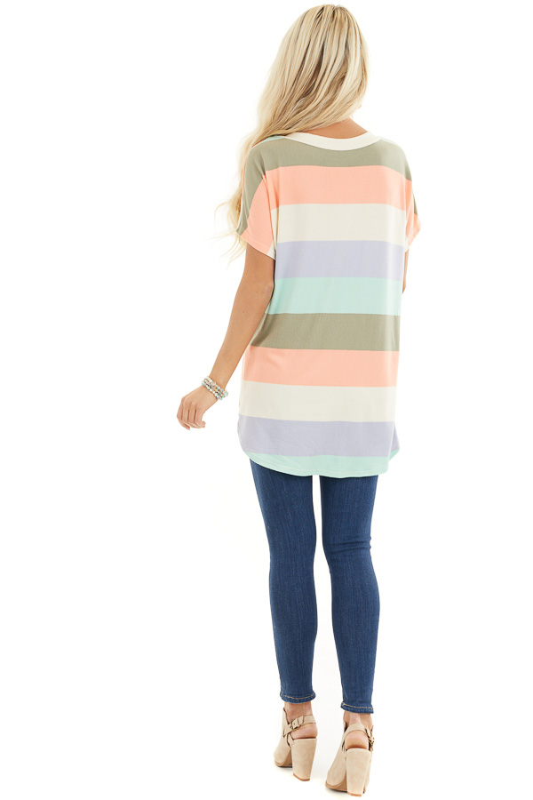 Multicolor Striped Knit Top with V Neck and Rounded Hemline back full body
