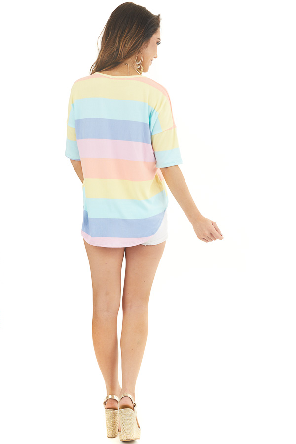 Pastel Multicolor Striped Print Half Sleeve Knit Top back full body