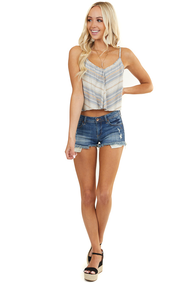Slate Blue and Tan Striped Camisole Crop Top with V Neckline