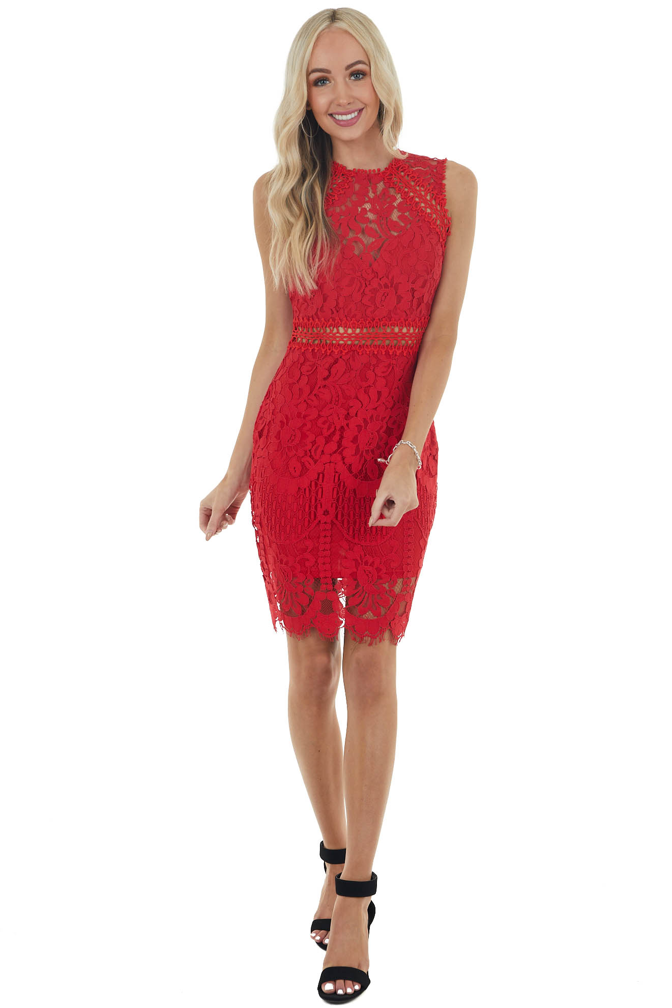 Cherry Lace High Neckline Bodycon Dress with Sheer Details