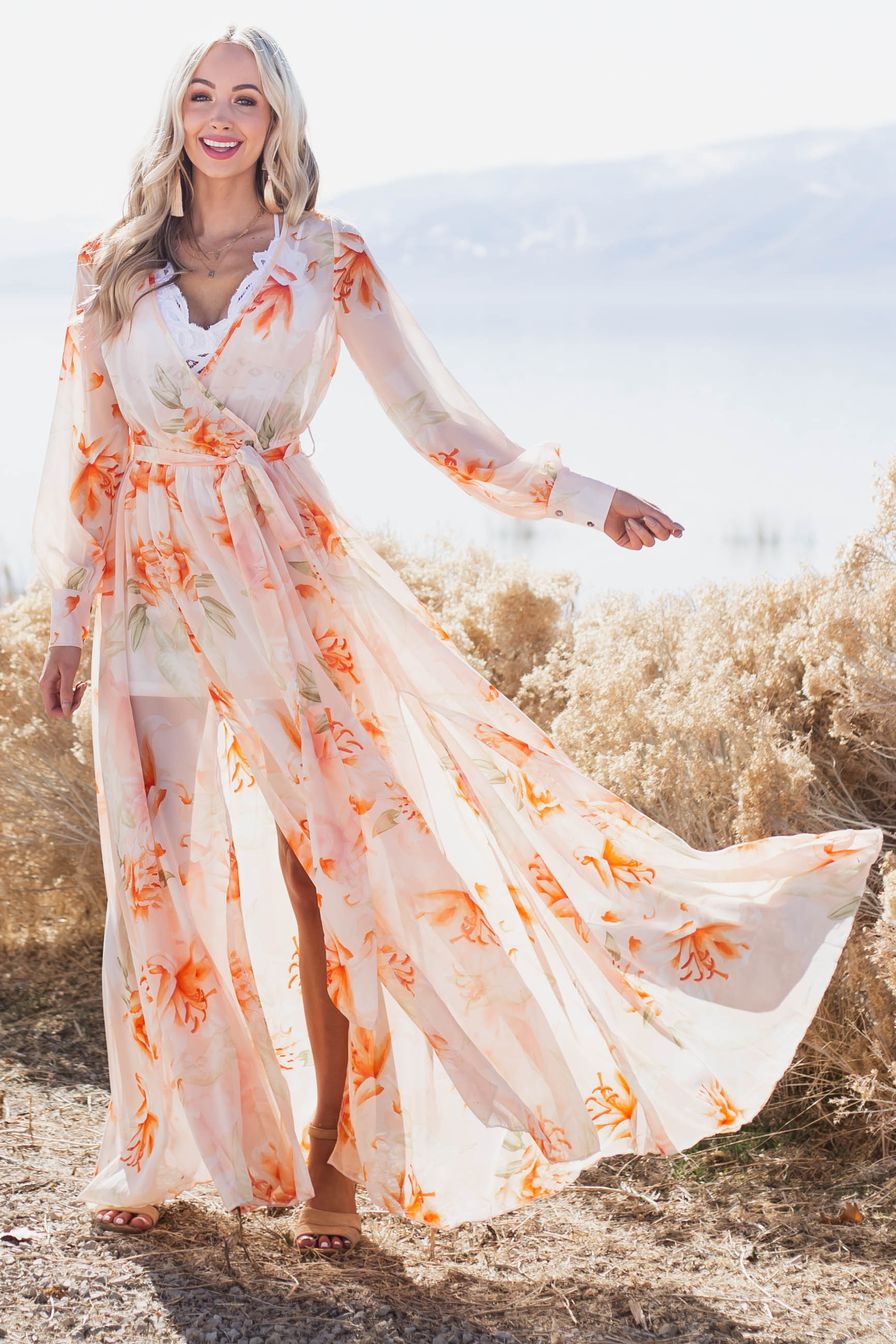 Light Peach Floral Print Long Sleeve Sheer Woven Maxi Dress