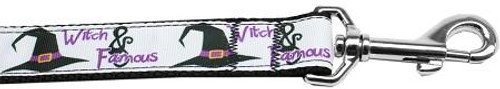 Witch And Famous Nylon Dog Leash 4 Foot
