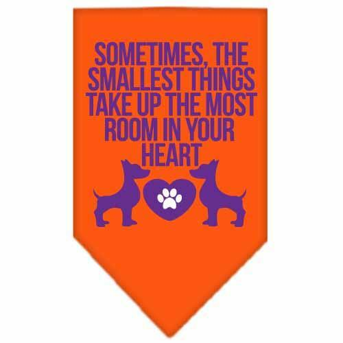 Smallest Things Screen Print Bandana Orange Small