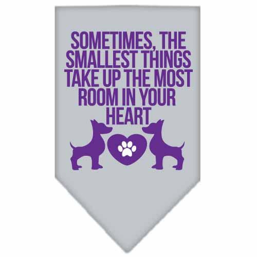 Smallest Things Screen Print Bandana Grey Small