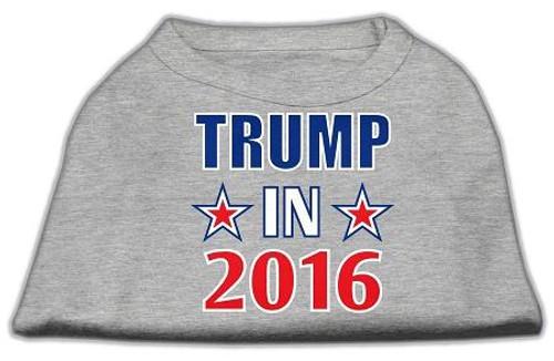 Trump In 2016 Election Screenprint Shirts Grey Xl (16)