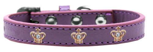 Gold Crown Widget Dog Collar Lavender Size 12