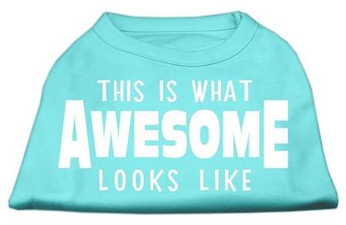 This Is What Awesome Looks Like Dog Shirt Aqua Lg (14)