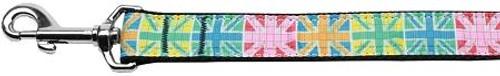 Multi-color Uk Flag Nylon Dog Leash 4 Foot