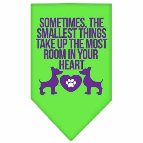 Smallest Things Screen Print Bandana Lime Green Large