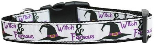 Witch And Famous Nylon Dog Collar Medium
