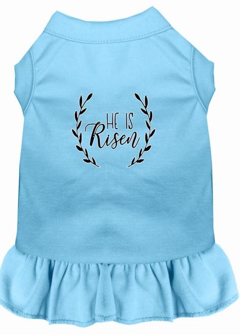 He Is Risen Screen Print Dog Dress Baby Blue Xxxl (20)