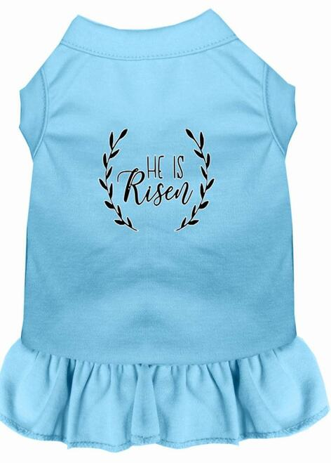 He Is Risen Screen Print Dog Dress Baby Blue Xxl (18)