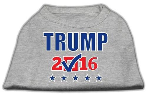 Trump Checkbox Election Screenprint Shirts Grey Sm (10)